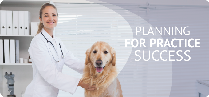 Veterinary Office Lease Solutions
